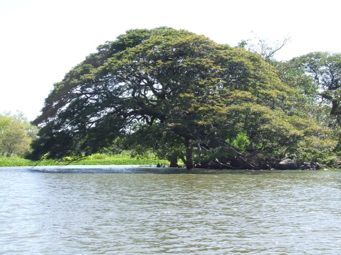costa-rica-2011-072_003